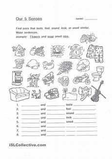 the five senses free printable worksheets 12609 our 5 senses the five senses worksheets printable worksheets and language