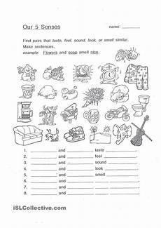 five senses worksheet grade 1 12640 our 5 senses ingles