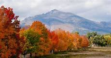 fall foliage 10 spots for great leaf peeping