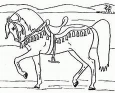 Pferde Ausmalbilder Kostenlos 2274 Best Ausmalbilder Images On Coloring