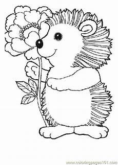 hedgehog with flower coloring page free hedgehog