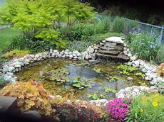 fabulous spring flower palette glenns garden gardening blog