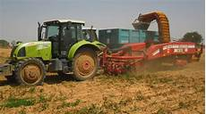 ics expertise machines for successful potato crop
