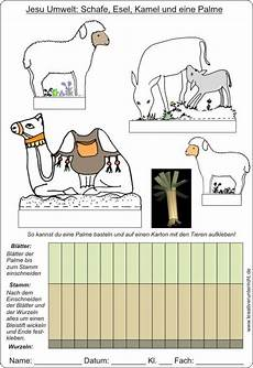 Ausmalbilder Umwelt Jesu Jesu Umwelt Tiere Basteln Tinker Animals