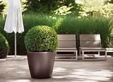 vasi da fiori per esterno vasi per piante da esterno vasi come scegliere i vasi