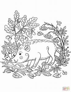 coloring pages animals in the forest 17029 boar in the forest coloring page free printable coloring pages