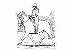 Ausmalbilder Pferde Reiterin Ausmalbilder Kostenlos Pferde 12 Ausmalbilder Kostenlos