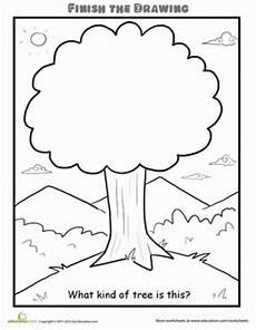 nature worksheets kindergarten 15127 finish the drawing what of tree is this teaching drawings lessons
