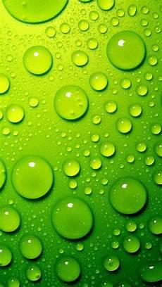 lime green iphone background lime green wallpaper wallpapersafari