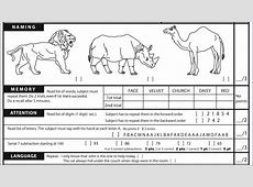 example of montreal cognitive test
