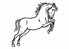 Ausmalbilder Springende Pferde Malvorlage Springendes Pferd Ausmalbild 10362