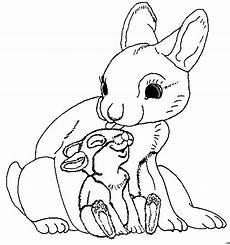 Malvorlagen Baby Hasen Hase Mit Baby Ausmalbild Malvorlage Gemischt