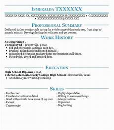 resume summary with no experience exles ms office pro plus