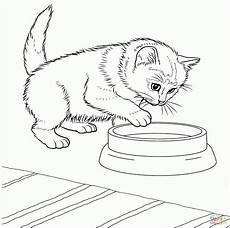 Ausmalbilder Katzen Kostenlos Ausdrucken Unique Katze Bilder Zum Ausmalen Ae Photo De