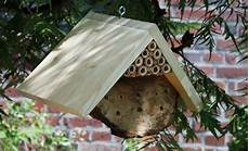 Insektenhotel Selbst De