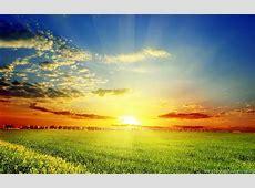 Sunshine Nature HD Wallpapers Desktop Background