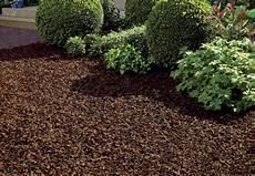 Garten Mit Rindenmulch Gestalten - rindenmulch im garten obi zeigt wie es richtig geht