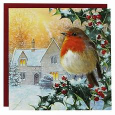 8 luxury christmas cards winter robin christmas cards at the works