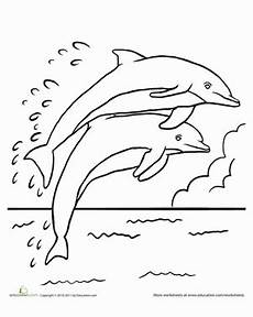 leaping dolphins coloring page education