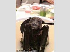 bat soup in china