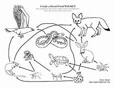 animals in the desert coloring pages 17026 desert habitat coloring pages at getcolorings free printable colorings pages to print and
