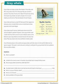 primaryleap co uk gray whale reading comprehension worksheet school comprehension