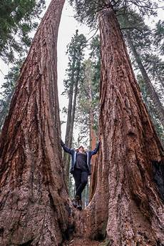 eqoi7a sequoia and national parks the greatest