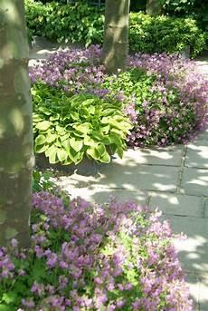 Beet Im Schatten Vorgarten Vorgarten Gestalten