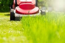 Rasenpflege Nach Dem Winter - rasen nach dem winter die erste pflege im fr 252 hjahr