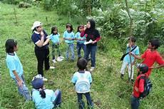 Manfaat Anak Belajar Di Alam Terbuka Yang Perlu Anda Ketahui