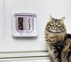 smarte alarmanlagen mehr sicherheit im die smarte katzenklappe f 252 r mehr sicherheit safe home
