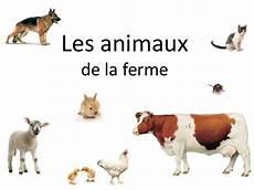 animaux de la ferme animaux de la ferme