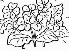 Ausmalbilder Blumen Zum Ausdrucken Ausmalbilder Blumen Blumen Vorlagen Zum Ausschneiden