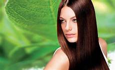 Which Is The Best Hair Color top 10 best hair color brands in india world blaze