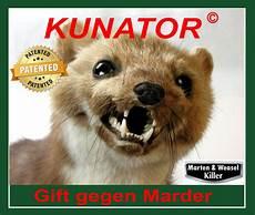 Kunator Marder Gift Gegen Marder Und Wiesel 50