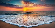 10 Fakta Mencengangkan Lautan Kaskus