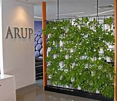 To Make Vertical Garden Indoor Living Wall by Green Wall For Your Office Why Vertical Wall Gardens Are