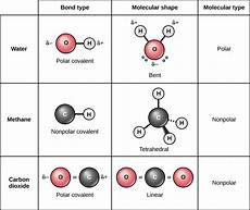 atoms isotopes ions and molecules the building blocks voer