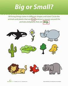 plants and animals worksheets for kindergarten 13507 is it big or small worksheet education