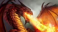 75 Gambar Naga Api Vs Air Hitam Putih Merah Biru