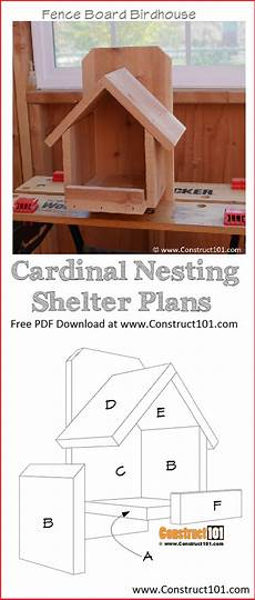 cardinal bird house plans diy cardinal bird house construct101