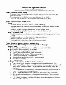 nidecmege hormones and the endocrine system worksheet answers
