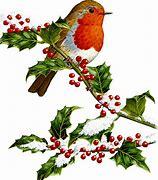 Image result for clip art winter birds