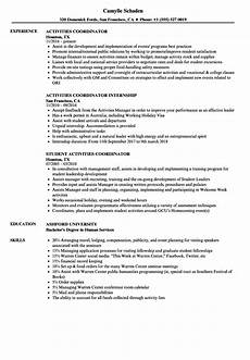 resume sles for activities director activities