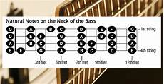 learning how to play the bass guitar beginner bass lessons cyberfretbass