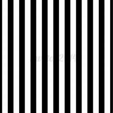 8x8ft Black White Stripes Wall Photography by 8x8ft Vinyl Black White Stripes Backdrop Photography