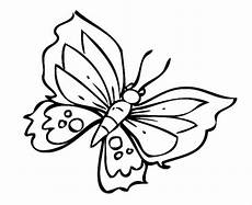 Malvorlagen Schmetterling Quiz Kostenlose Malvorlage Natur Toller Schmetterling Zum Ausmalen