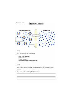 osmosis worksheets for elementary students ocr osmosis lesson teaching resources