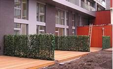 sichtschutz f 252 r garten und terrasse tipps von hornbach