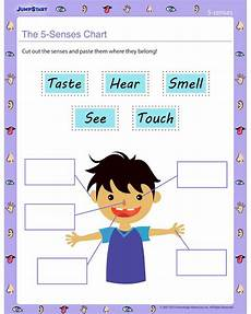 free printable worksheets about the five senses 12629 69 best images about 5 senses on worksheets for kindergarten science worksheets and